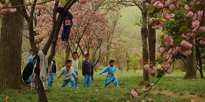 טיול מאורגן לסין - מקדש שאולין - יום 5